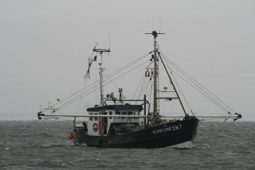 Fischerh 228 Fen In Europa Sw7
